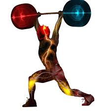 Comment prévenir les douleurs lombaires lors de la musculation